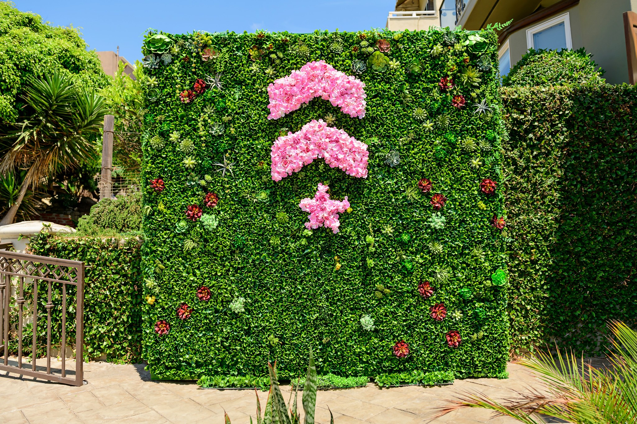 Pink Barry's Bootcamp upward arrows and star logo made of flowers on green living wall